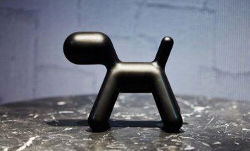 hond-puppyXS-magis-ENNAIR